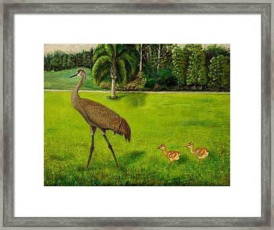 Painted Sandhill Crane With Chicks  Framed Print by Zina Stromberg