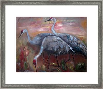 Sandhill Cranes Framed Print by Susan Hanlon