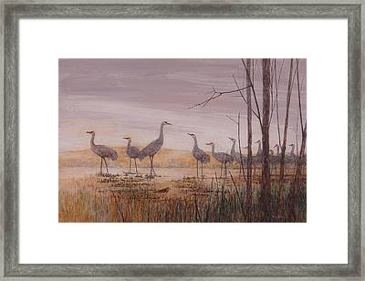 Sandhill Lineup Framed Print