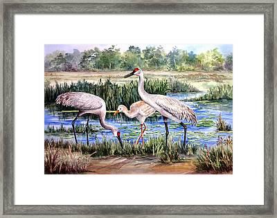 Sandhills By The Pond Framed Print by Roxanne Tobaison