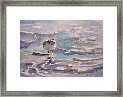 Sandpiper And Seafoam 3-8-15 Framed Print by Julianne Felton