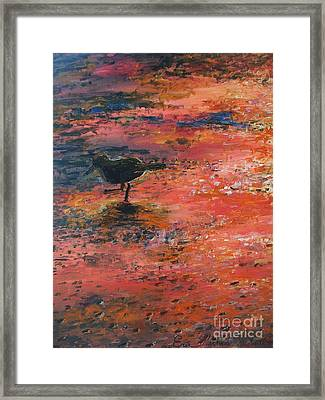 Sandpiper Cape May Framed Print by Eric  Schiabor
