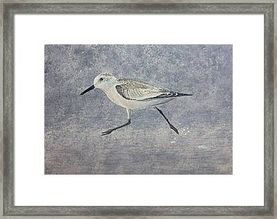 Framed Print featuring the painting Sandpiper by Stan Tenney