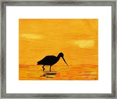 Sandpiper - Sunset Framed Print