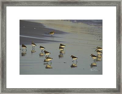 Sandpiper Sunset Reflection Framed Print