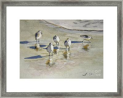 Sandpipers 2 Watercolor 5-13-12 Julianne Felton Framed Print by Julianne Felton