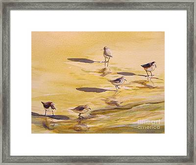 Sandpipers 5 Framed Print by Julianne Felton