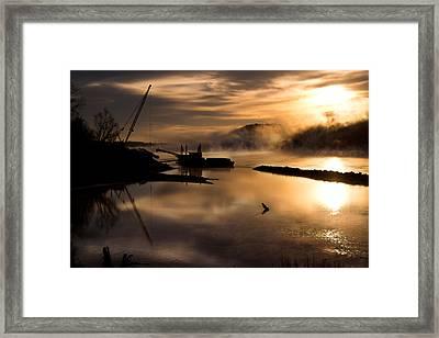Sandplant Dawn Framed Print