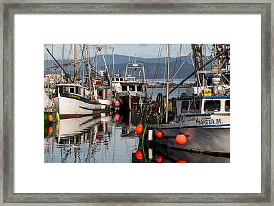 Sandra M Framed Print by Randy Hall