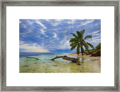 Sandspur Beach Framed Print