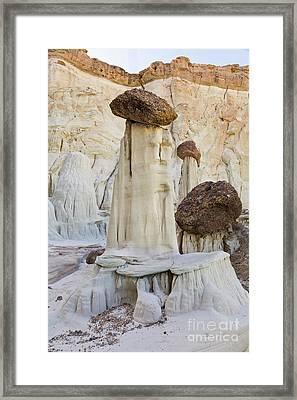 Sandstone Toadstools  Framed Print