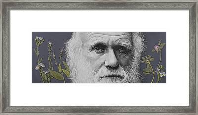 Sandwalk Wood- Charles Darwin.  Framed Print