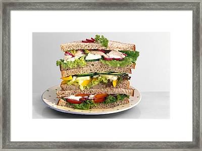 Sandwiches Framed Print by Science Photo Library