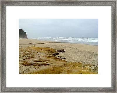 Sandy Beach Framed Print by Carla Carson