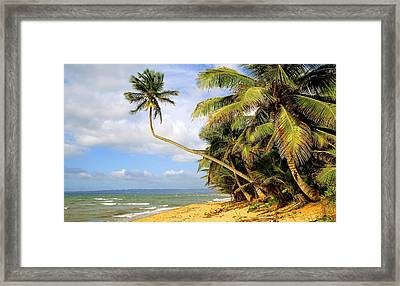 Sandy Beach Framed Print