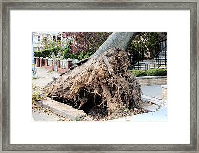 Framed Print featuring the photograph Sandy In Astoria 3 by Jim Poulos