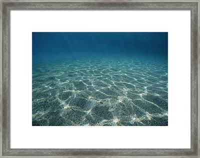 Sandy Lagoon On Dolphin Reef Framed Print by Jeff Rotman