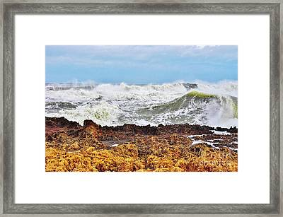 Sandy On The Rocks 2 Framed Print by Don Youngclaus