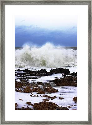 Sandy On The Rocks 3 Framed Print by Don Youngclaus