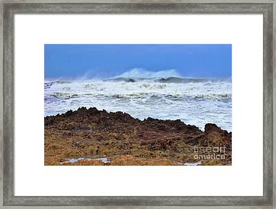 Sandy On The Rocks 4 Framed Print by Don Youngclaus
