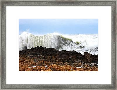 Sandy On The Rocks 5 Framed Print by Don Youngclaus