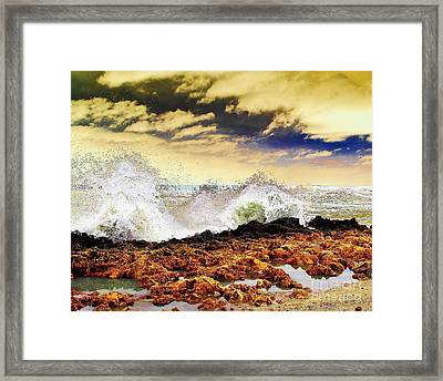 Sandy On The Rocks Framed Print by Don Youngclaus