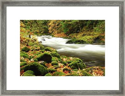 Sandy River In Autumn, Welches, Oregon Framed Print