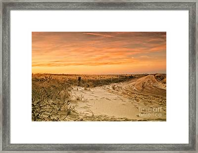 Sandy Road Leading To The Beach Framed Print