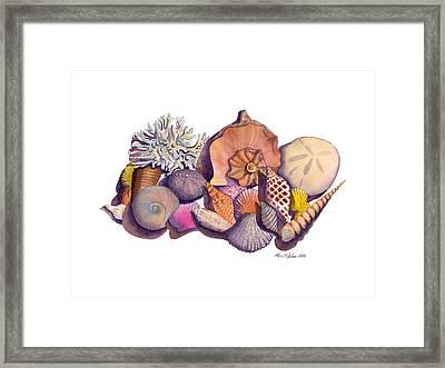 Sanibel Shells Framed Print by Kerri Meehan