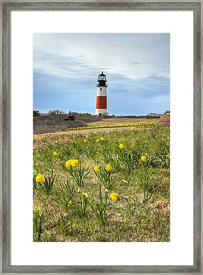 Sankaty Lighthouse Nantucket Framed Print
