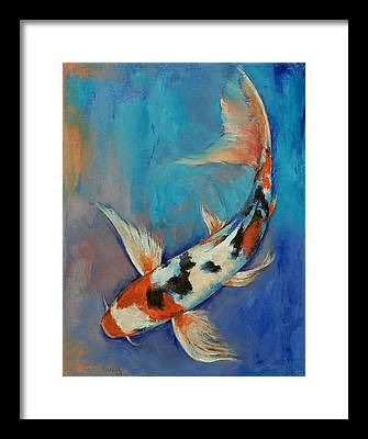 Koi Framed Prints