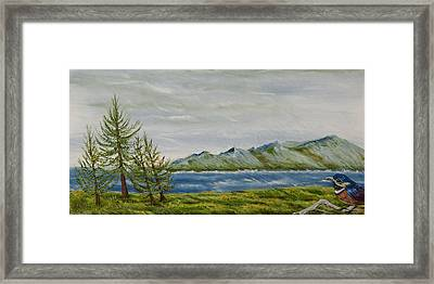 Framed Print featuring the painting Santa Barbara Sentinel  by Susan Culver