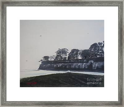 Framed Print featuring the painting Santa Barbara Shoreline Park by Ian Donley