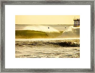 Santa Cruz Surfers Dream Framed Print by Paul Topp