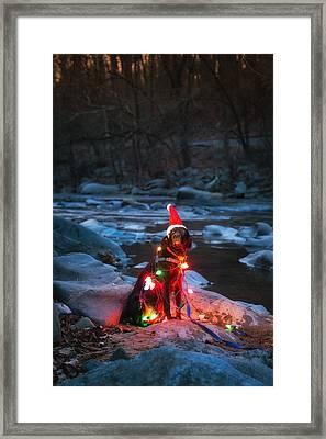 Santa Lab Framed Print by Geoffrey Baker