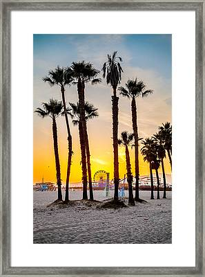 Santa Monica Palms Framed Print