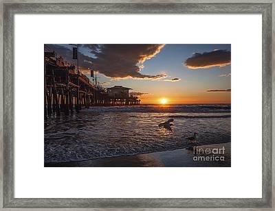 Santa Monica Sunset Framed Print