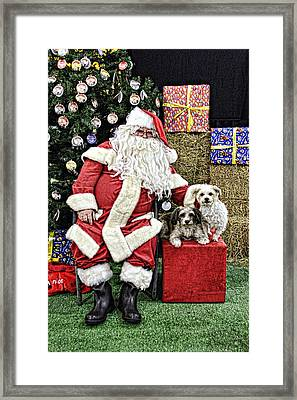 Santa Paws  Framed Print by Helen Akerstrom Photography