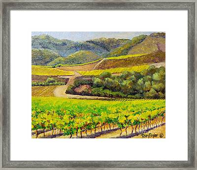 Santa Rita Color Framed Print by Terry Taylor
