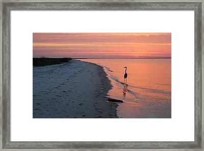 Santa Rosa Sunset Framed Print