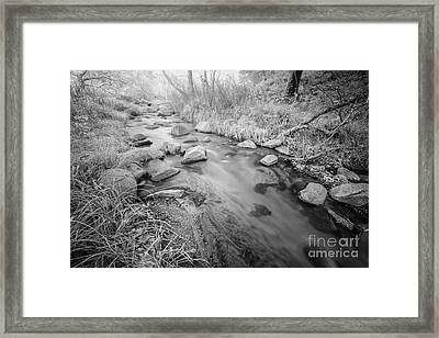 Santa Ysabel Creek Framed Print