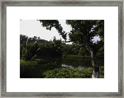 Sanya Park Framed Print by Qing