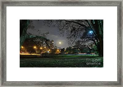 Sao Paulo - Ibirapuera Park At Night Under Moonlit Framed Print by Carlos Alkmin