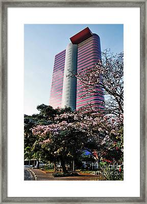 Sao Paulo - Modern Building - Tomie Ohtake Institute Framed Print