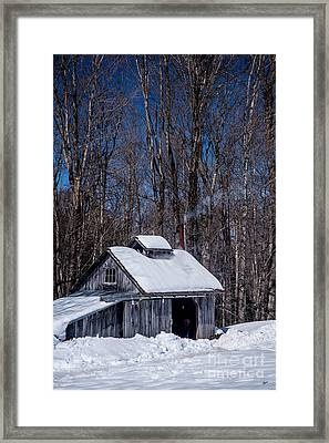 Sap House II Framed Print by Alana Ranney