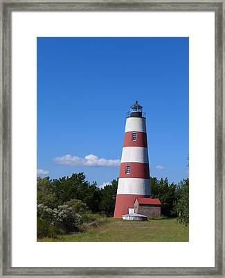 Sapelo Light Framed Print