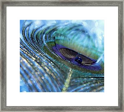 Saphire Blues Framed Print