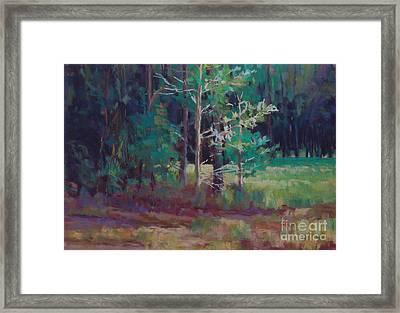 Saplings Framed Print by Virginia Dauth
