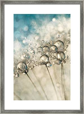 Sapphire And Silver Sparkle Framed Print by Sharon Johnstone