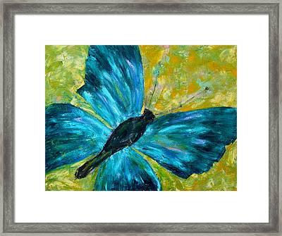 Sapphirine Butterfly Framed Print